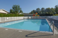 Swimmimg Pool 2